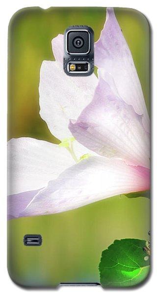 Grasshopper And Flower Galaxy S5 Case