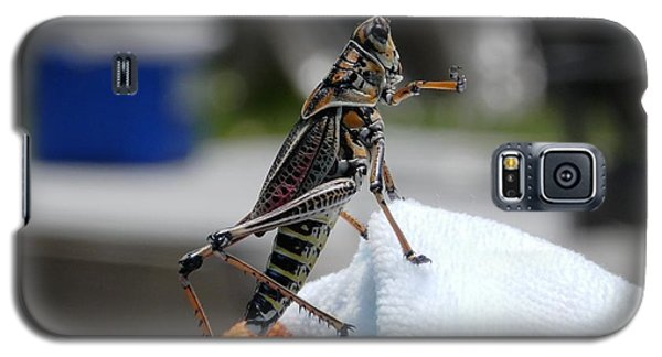 Dancing Grasshopper At The Pool Galaxy S5 Case