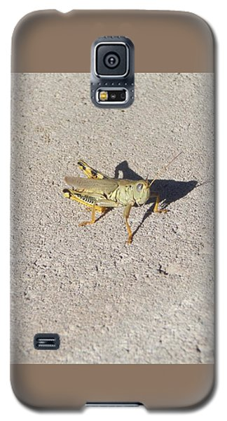 Grasshopper Curiosity Galaxy S5 Case