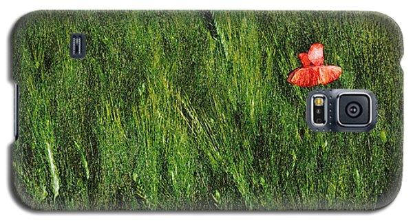 Grassland And Red Poppy Flower 2 Galaxy S5 Case