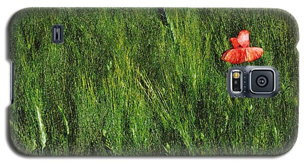 Grassland And Red Poppy Flower 2 Galaxy S5 Case