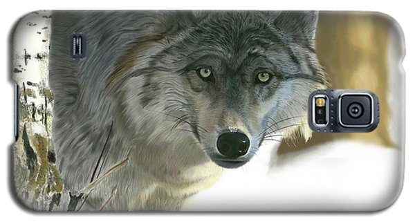 Gray Wolf Galaxy S5 Case