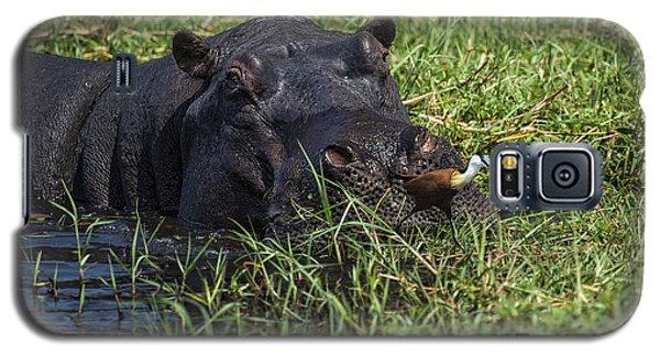 The Hippo And The Jacana Bird Galaxy S5 Case