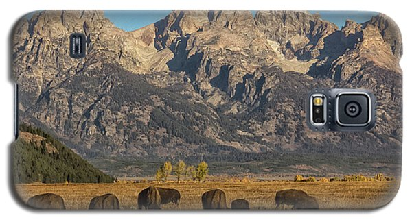 Grazing Under The Tetons Wildlife Art By Kaylyn Franks Galaxy S5 Case