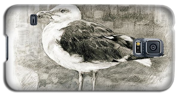 Great Black-backed Gull Galaxy S5 Case