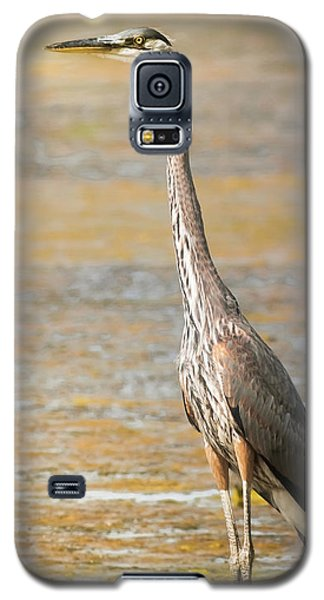 Galaxy S5 Case featuring the photograph Great Blue At The Flats by Robert Frederick