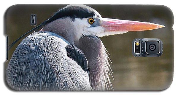 Great Blue Beauty Galaxy S5 Case