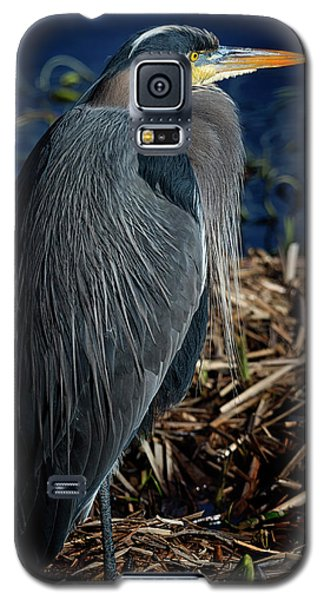 Galaxy S5 Case featuring the photograph Great Blue Heron 2 by Randy Hall