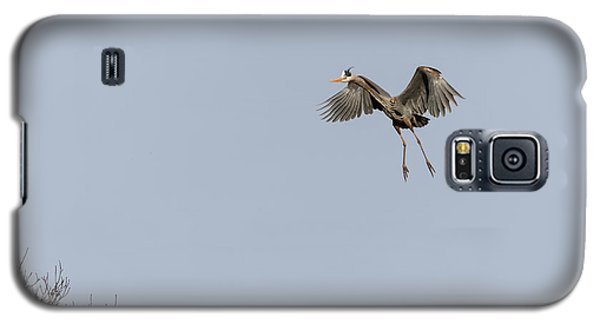 Galaxy S5 Case featuring the photograph Great Blue Heron 2015-14 by Thomas Young