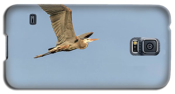 Galaxy S5 Case featuring the photograph Great Blue Heron 2015-17 by Thomas Young