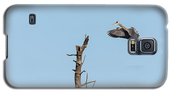 Great Blue Heron 2017-3 Galaxy S5 Case by Thomas Young
