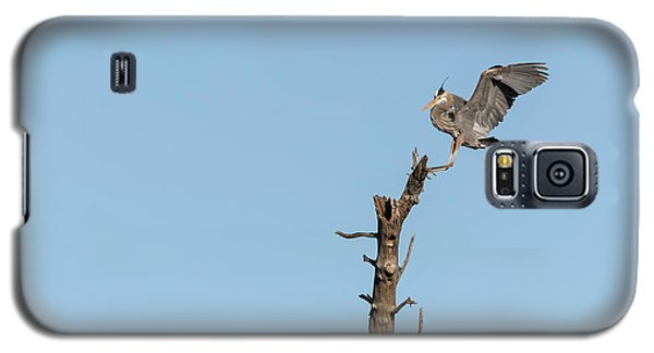 Great Blue Heron 2017-4 Galaxy S5 Case by Thomas Young