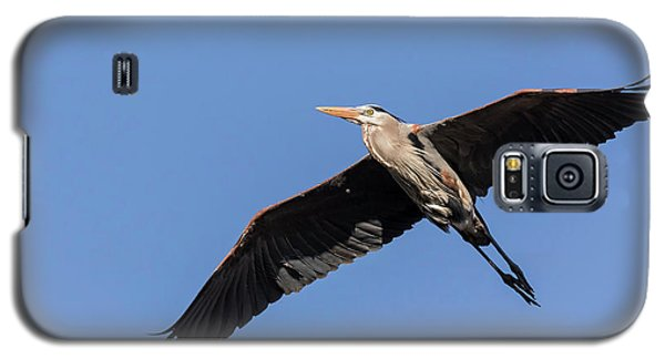 Great Blue Heron 2017-6 Galaxy S5 Case by Thomas Young
