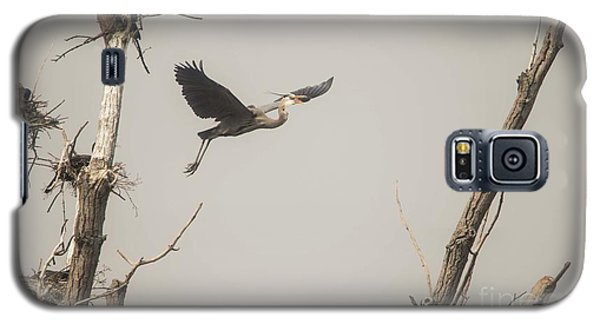 Galaxy S5 Case featuring the photograph Great Blue Heron - 6 by David Bearden