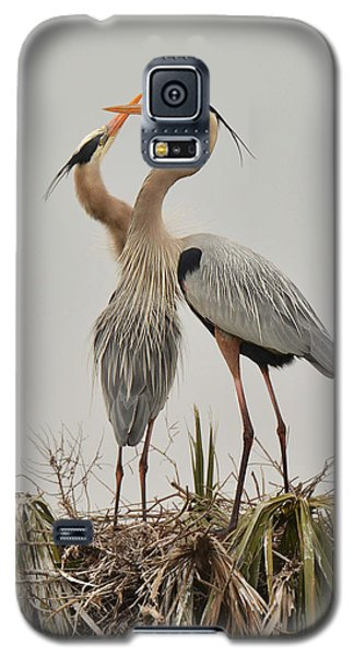 Great Blue Heron Affection Galaxy S5 Case