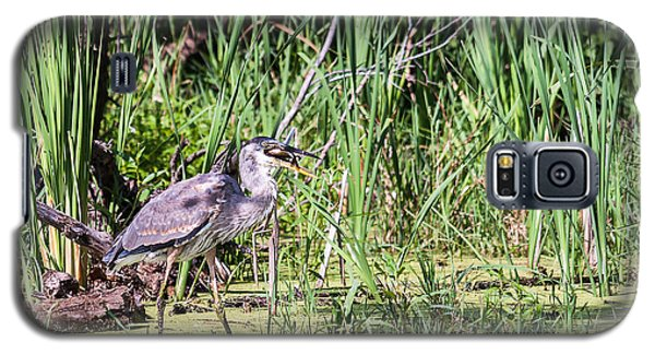Galaxy S5 Case featuring the photograph Great Blue Heron And Blue Gill by Edward Peterson
