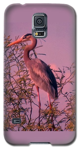 Great Blue Heron - Artistic 6 Galaxy S5 Case