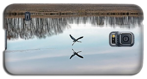 Great Blue Heron At Take-off Galaxy S5 Case by Jennifer Nelson