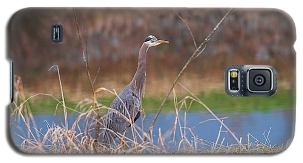 Galaxy S5 Case featuring the photograph Great Blue Heron By The River by Sharon Talson