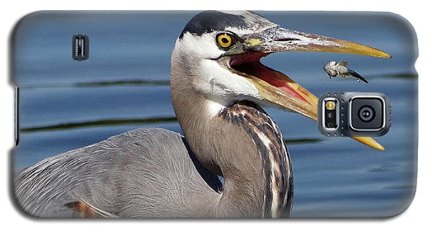 Great Blue Heron Feast Galaxy S5 Case