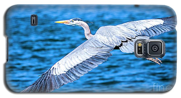 Great Blue Heron Flight Galaxy S5 Case