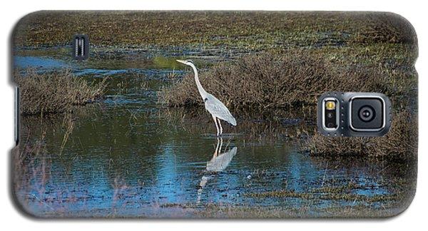 Great Blue Heron Galaxy S5 Case