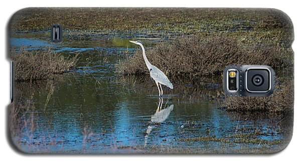 Great Blue Heron Galaxy S5 Case