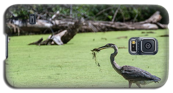 Galaxy S5 Case featuring the photograph Great Blue Heron Main Meal by Edward Peterson