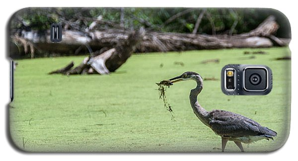 Great Blue Heron Main Meal Galaxy S5 Case