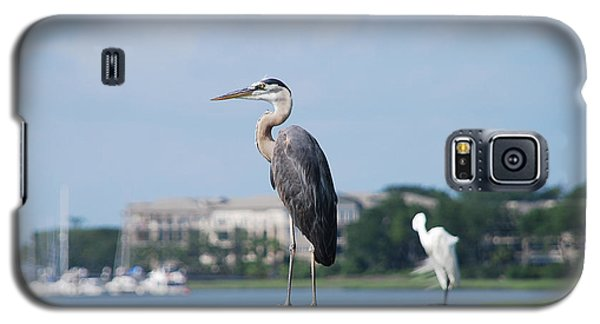 Galaxy S5 Case featuring the photograph Great Blue Heron by Margaret Palmer