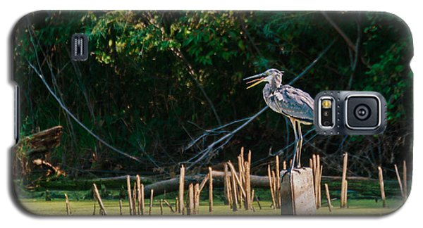 Galaxy S5 Case featuring the photograph Great Blue Heron Mouth by Edward Peterson