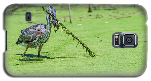 Galaxy S5 Case featuring the photograph Great Blue Heron Mouthful by Edward Peterson