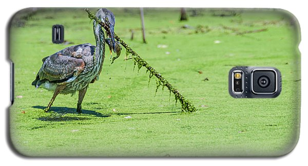 Great Blue Heron Mouthful Galaxy S5 Case