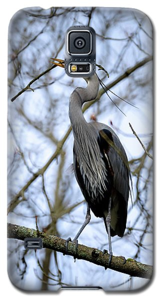 Galaxy S5 Case featuring the photograph Great Blue Heron Nesting 2017 - 6 by Terry Elniski
