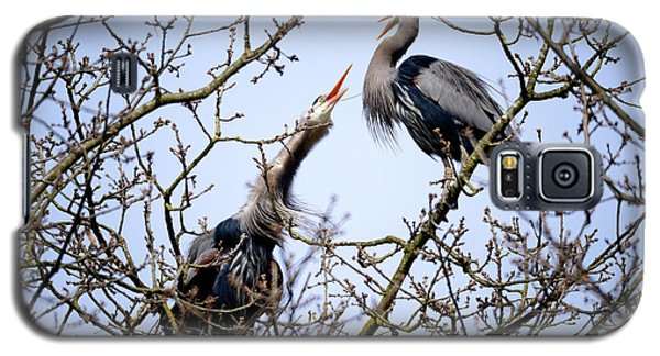 Galaxy S5 Case featuring the photograph Great Blue Heron Nesting 2017 - 8 by Terry Elniski