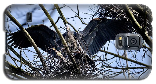Galaxy S5 Case featuring the photograph Great Blue Heron Nesting 2017 - 9 by Terry Elniski