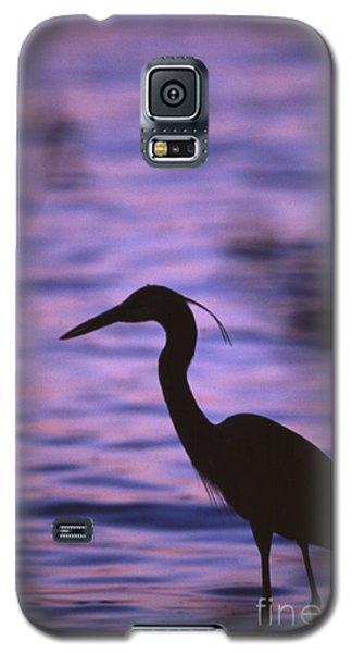 Great Blue Heron Photo Galaxy S5 Case