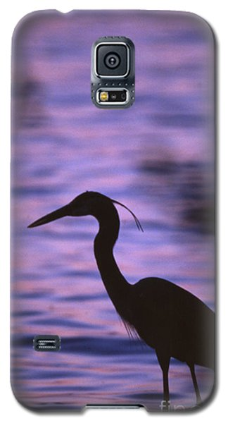 Great Blue Heron Photo Galaxy S5 Case