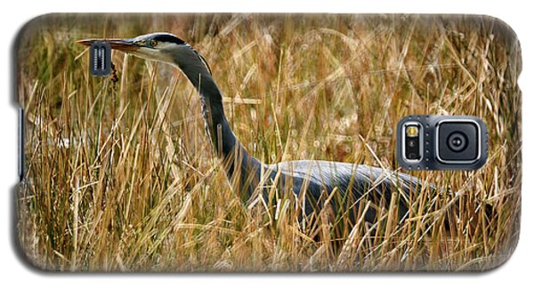 Galaxy S5 Case featuring the photograph Great Blue Heron On The Hunt 4 by Terry Elniski