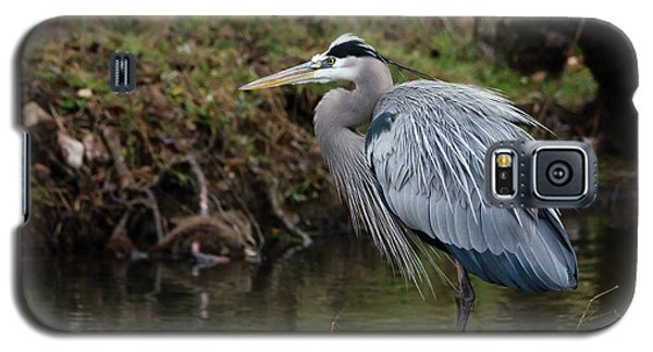 Galaxy S5 Case featuring the photograph Great Blue Heron On The Watch by George Randy Bass