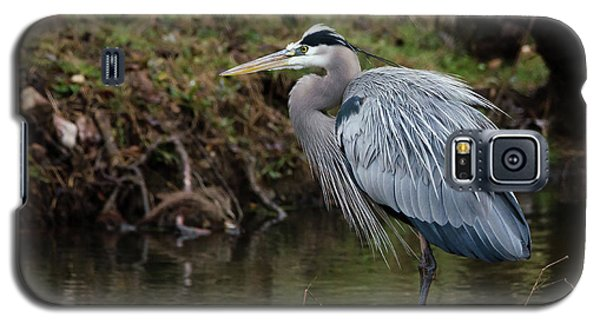 Great Blue Heron On The Watch Galaxy S5 Case