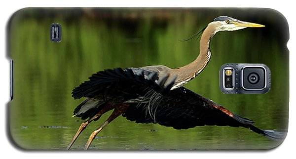 Great Blue Heron - Over Green Waters Galaxy S5 Case