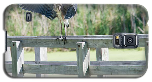 Great Blue Heron Preening Galaxy S5 Case