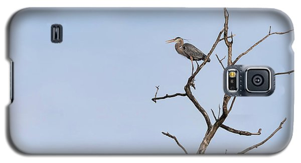 Galaxy S5 Case featuring the photograph Great Blue Heron Presentation 2017-1  by Thomas Young