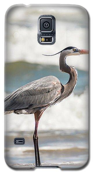 Great Blue Heron Profile Galaxy S5 Case