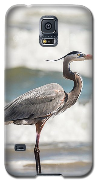 Great Blue Heron Profile Galaxy S5 Case