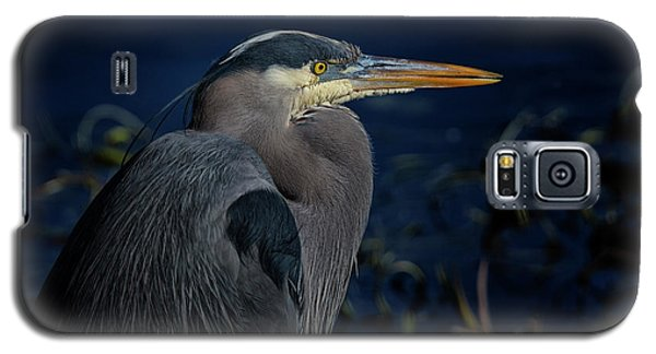 Galaxy S5 Case featuring the photograph Great Blue Heron by Randy Hall