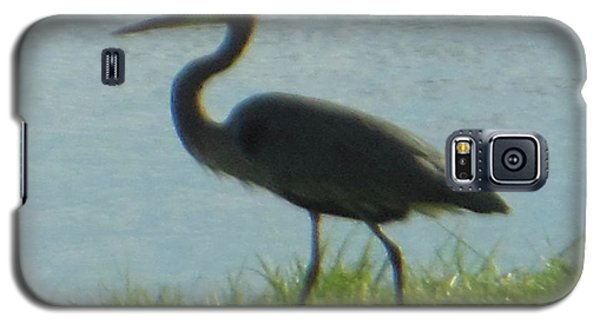 Galaxy S5 Case featuring the photograph Great Blue Heron by Rockin Docks Deluxephotos