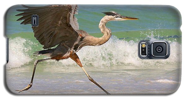 Great Blue Heron Running In The Surf Galaxy S5 Case by Myrna Bradshaw