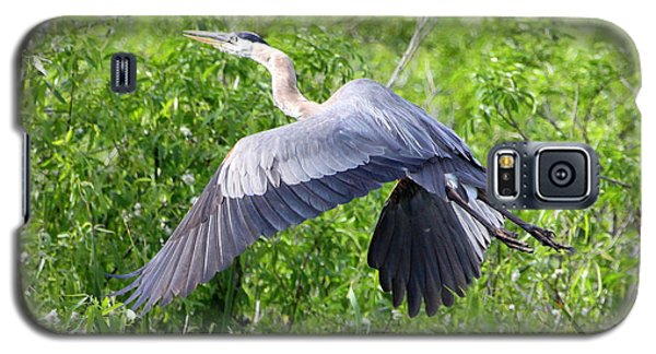 Galaxy S5 Case featuring the photograph Great Blue Heron Takeoff by Barbara Bowen